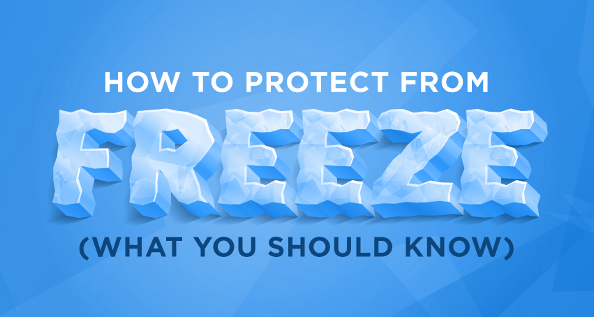 Protect Your Shipments from Freeze